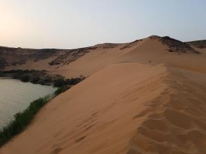 Les dunes du lac Nasser