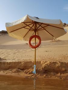 Détente au bord du lac Nasser